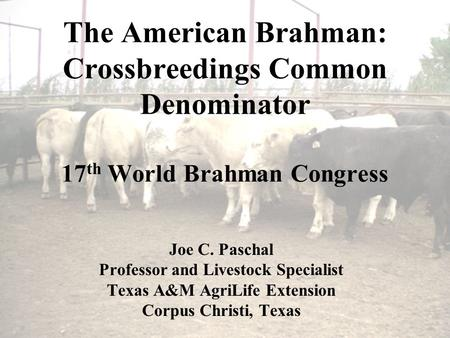 The American Brahman: Crossbreedings Common Denominator 17 th World Brahman Congress Joe C. Paschal Professor and Livestock Specialist Texas A&M AgriLife.