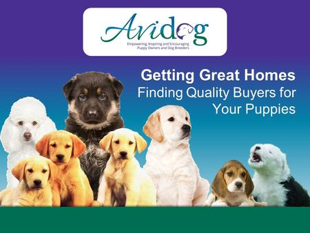 Getting Great Homes Finding Quality Buyers for Your Puppies.
