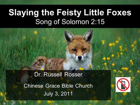 Slaying the Feisty Little Foxes Song of Solomon 2:15 Dr. Russell Rosser Chinese Grace Bible Church July 3, 2011.