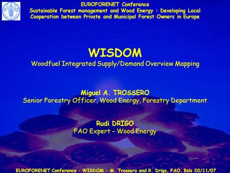 EUROFORENET Conference - WISDOM - M. Trossero and R. Drigo, FAO. Bsls 20/11/07 EUROFORENET Conference Sustainable Forest management and Wood Energy : Developing.