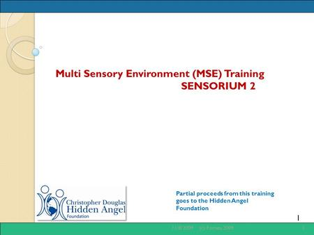 1 Multi Sensory Environment (MSE) Training SENSORIUM 2 Partial proceeds from this training goes to the Hidden Angel Foundation 11/8/20091(c) Fornes, 2009.
