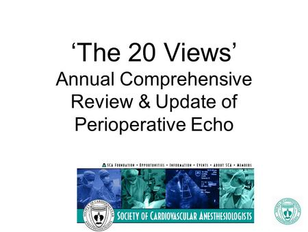 'The 20 Views' Annual Comprehensive Review & Update of Perioperative Echo.