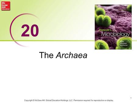 The Archaea 1 20 Copyright © McGraw-Hill Global Education Holdings, LLC. Permission required for reproduction or display.