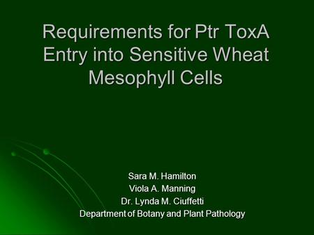 Requirements for Ptr ToxA Entry into Sensitive Wheat Mesophyll Cells Sara M. Hamilton Viola A. Manning Dr. Lynda M. Ciuffetti Department of Botany and.