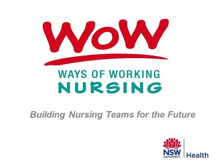 Building Nursing Teams for the Future. Why should nurses consider examining the way we organise our nursing care?