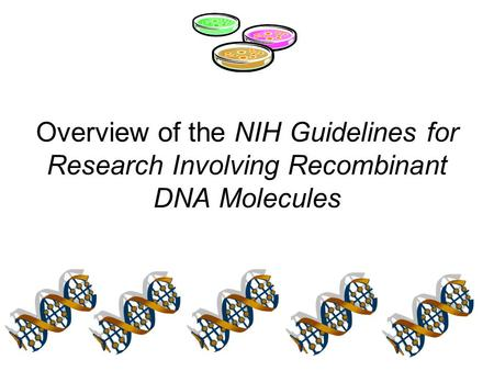 What are the NIH Guidelines for Research Involving Recombinant DNA Molecules?