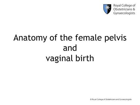 © Royal College of Obstetricians and Gynaecologists Anatomy of the female pelvis and vaginal birth.