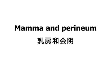 Mamma and perineum 乳房和会阴 Ⅰ.Mamma 乳房 The mamma is present in both male and female. However the mamma of male does not develop. So we just talk about.