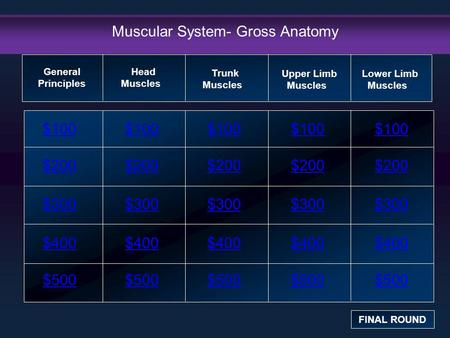 Muscular System- Gross Anatomy $100 $200 $300 $400 $500 $100$100$100 $200 $300 $400 $500 General Principles FINAL ROUND Head Muscles Trunk Muscles Upper.
