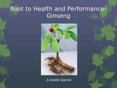 Root to Health and Performance-Ginseng