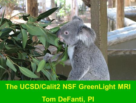 The UCSD/Calit2 NSF GreenLight MRI Tom DeFanti, PI.