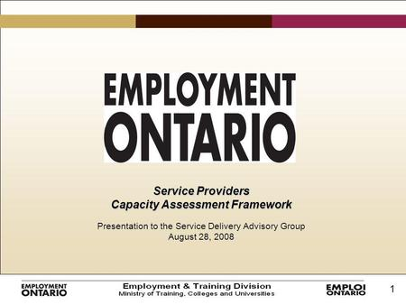 1 Service Providers Capacity Assessment Framework Presentation to the Service Delivery Advisory Group August 28, 2008.