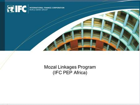 Mozal Linkages Program (IFC PEP Africa). PEP Africa Pipeline in Mozambique  Mozlink II  Tourism Anchor Project  SME EDI  IFC Against AIDS.