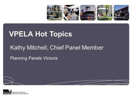 VPELA Hot Topics Planning Panels Victoria Kathy Mitchell, Chief Panel Member.