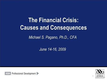 1 The Financial Crisis: Causes and Consequences Michael S. Pagano, Ph.D., CFA June 14-16, 2009 1.