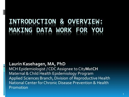 Laurin Kasehagen, MA, PhD MCH Epidemiologist / CDC Assignee to CityMatCH Maternal & Child Health Epidemiology Program Applied Sciences Branch, Division.