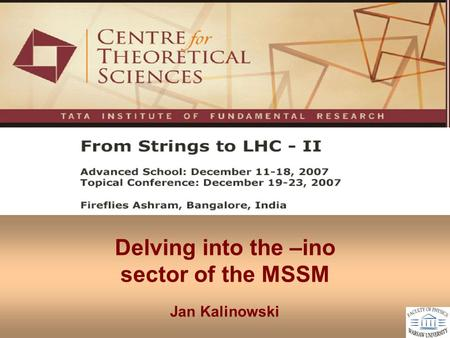 Delving into the –ino sector of the MSSM Jan Kalinowski.