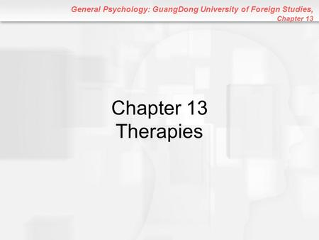 Chapter 13 Therapies.
