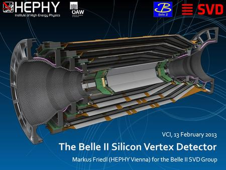The Belle II Silicon Vertex Detector Markus Friedl (HEPHY Vienna) for the Belle II SVD Group VCI, 13 February 2013.