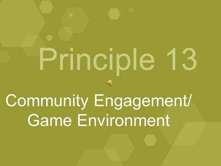 Principle 13 Community Engagement/ Game Environment.
