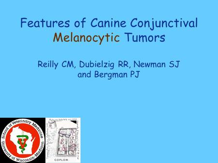 Features of Canine Conjunctival Melanocytic Tumors Reilly CM, Dubielzig RR, Newman SJ and Bergman PJ.