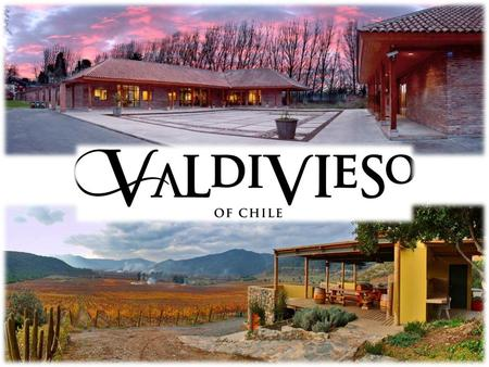 Valdivieso Winery - Main facts - Founded in 1879. Family vineyard (three generations involved directly in the business). Still & sparkling wine producers.