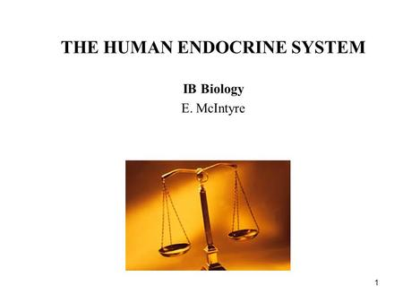 1 THE HUMAN ENDOCRINE SYSTEM IB Biology E. McIntyre.