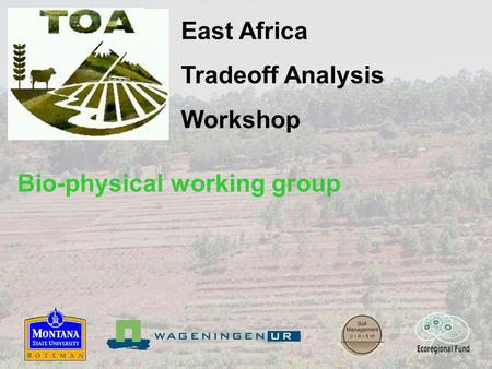 East Africa Tradeoff Analysis Workshop Bio-physical working group.