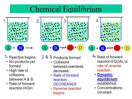 Chemical Equilibrium A B + A B + C D + A B + C D + Reaction begins. No products yet formed. High rate of collisions between A & B. Rate of forward reaction.