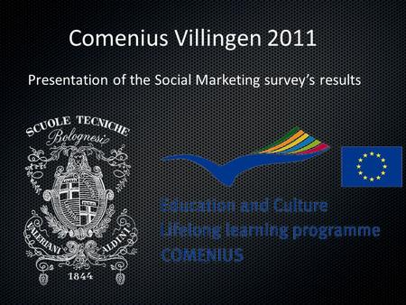 Comenius Villingen 2011 Presentation of the Social Marketing survey's results.