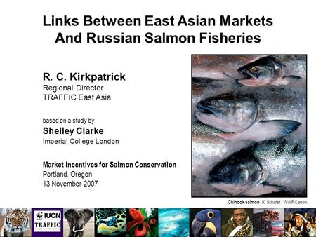 Links Between East Asian Markets And Russian Salmon Fisheries R. C. Kirkpatrick Regional Director TRAFFIC East Asia based on a study by Shelley Clarke.