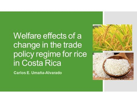Welfare effects of a change in the trade policy regime for rice in Costa Rica Carlos E. Umaña-Alvarado.