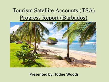 Tourism Satellite Accounts (TSA) Progress Report (Barbados)