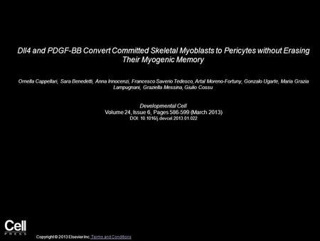 Dll4 and PDGF-BB Convert Committed Skeletal Myoblasts to Pericytes without Erasing Their Myogenic Memory Ornella Cappellari, Sara Benedetti, Anna Innocenzi,
