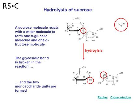 Hydroylsis Hydrolysis of sucrose A sucrose molecule reacts with a water molecule to form one α-glucose molecule and one α- fructose molecule The glycosidic.