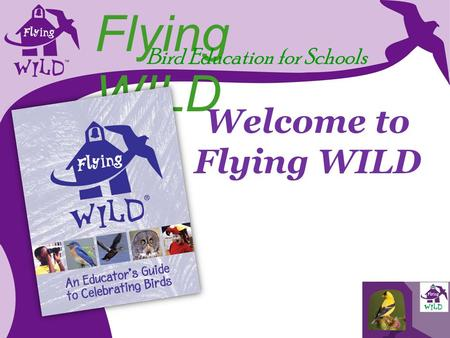 Flying WILD Bird Education for Schools Welcome to Flying WILD.