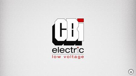 INTRODUCTION SHAREHOLDERS CBI-ELECTRIC: LOW VOLTAGE AT A GLANCE CBI-ELECTRIC: LOW VOLTAGE OVERVIEW.