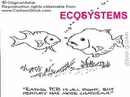 ECOSYSTEMS. YOU MUST KNOW… HOW ENERGY FLOWS THROUGH THE ECOSYSTEM BY UNDERSTANDING THE TERMS THAT RELATE TO FOOD CHAINS AND FOOD WEBS THE DIFFERENCE BETWEEN.