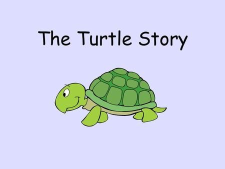 The Turtle Story. This is a story about a young turtle who did not like to go to school. His name was Little Turtle. Little Turtle was very upset about.