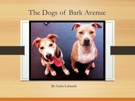 The Dogs of Bark Avenue By Cache Lubanski. Meet Idgie Idgie is a very sweet, loving, obedient, and gentle dog. She always enjoys going on walks, and getting.