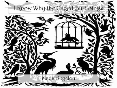 caged bird maya angelou ppt video online download. Black Bedroom Furniture Sets. Home Design Ideas