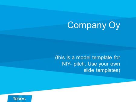 Company Oy (this is a model template for NIY- pitch. Use your own slide templates)