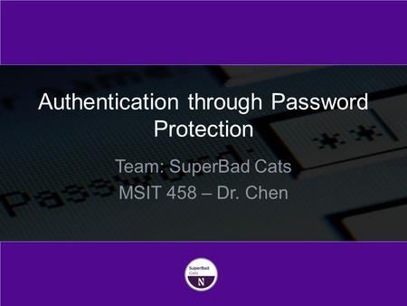 Team: SuperBad Cats MSIT 458 – Dr. Chen Authentication through Password Protection.
