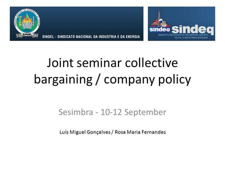 Joint seminar collective bargaining / company policy Sesimbra - 10-12 September Luís Miguel Gonçalves / Rosa Maria Fernandes.
