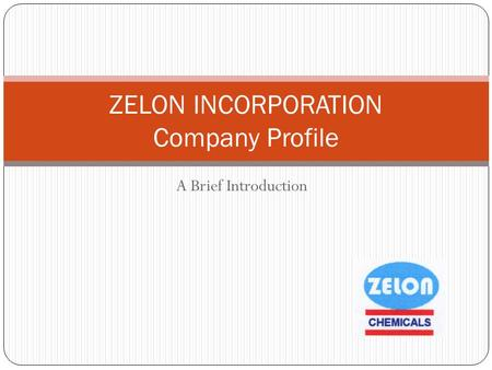 A Brief Introduction ZELON INCORPORATION Company Profile.