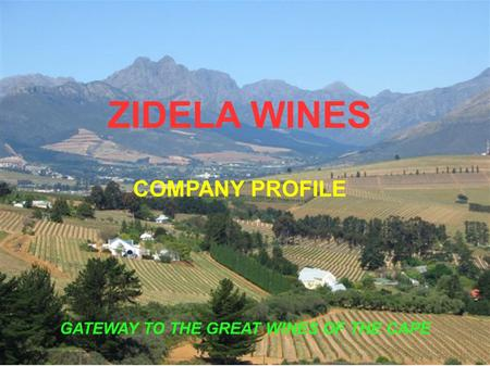 ZIDELA WINES COMPANY PROFILE GATEWAY TO THE GREAT WINES OF THE CAPE.
