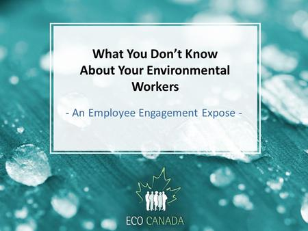 What You Don't Know About Your Environmental Workers