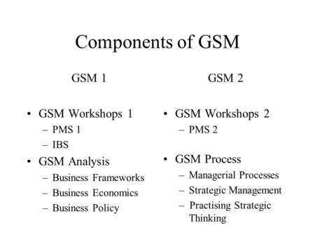 Components of GSM GSM 1 GSM Workshops 1 –PMS 1 –IBS GSM Analysis –Business Frameworks –Business Economics –Business Policy GSM 2 GSM Workshops 2 –PMS 2.