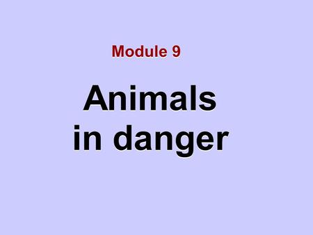 Animals in danger Animals in danger Module 9. Unit 1 We need to protect animals.