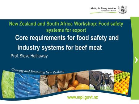 New Zealand and South Africa Workshop: Food safety systems for export Core requirements for food safety and industry systems for beef meat Prof. Steve.